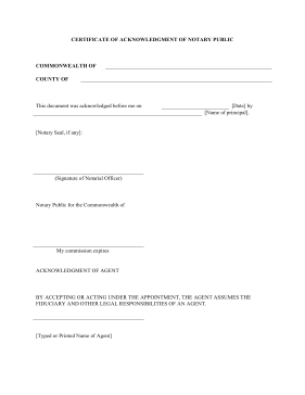 28 line pleading paper template